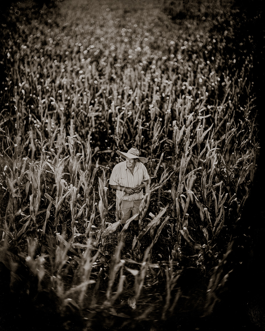 Patrick-Cavan-Brown-Tintype-Wetplate-01-Farmer-Corn