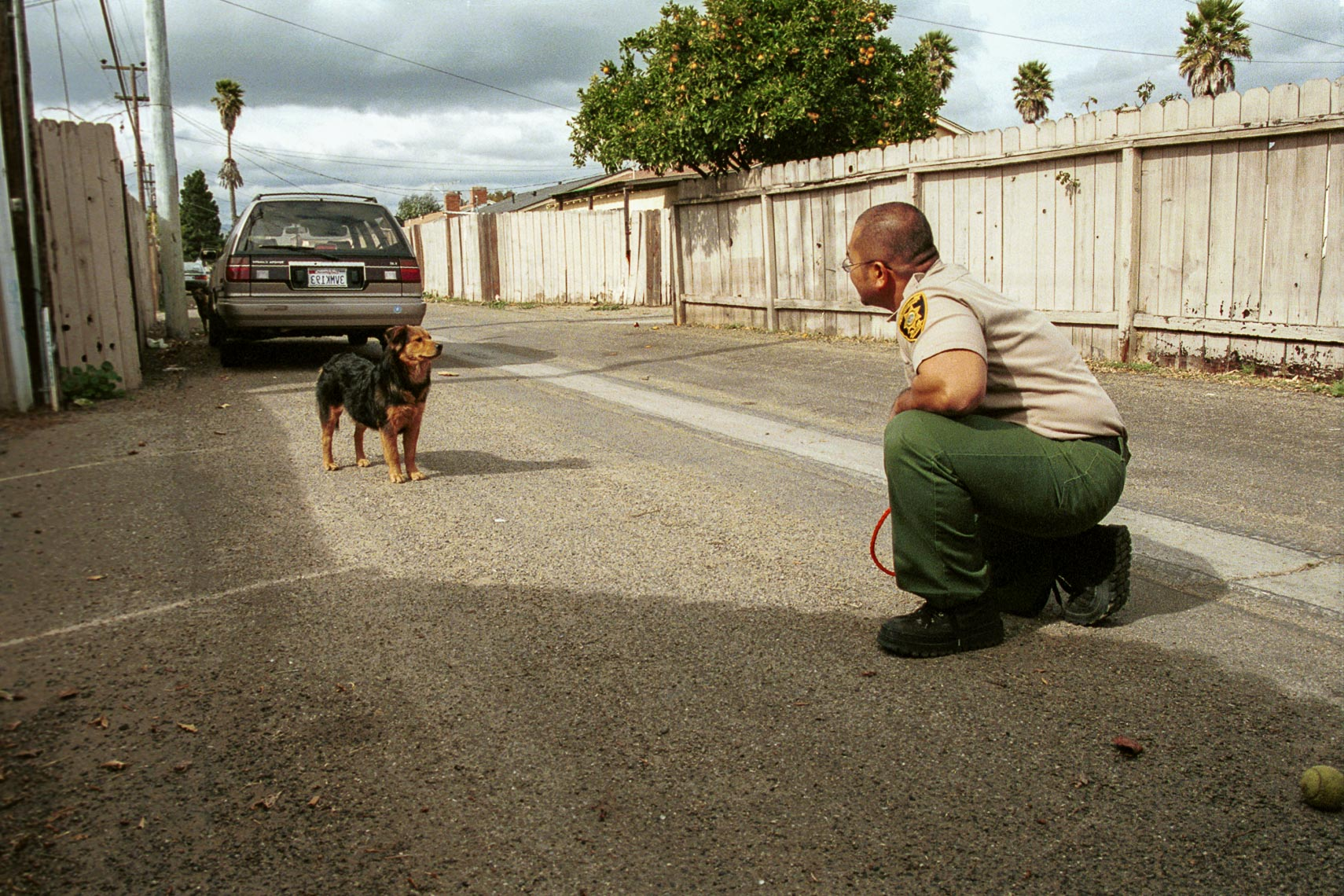 patrick_cavan_brown_root_dog_catcher_pound_animal_control-27